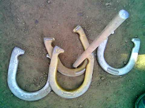 two horseshoes encircling the stake